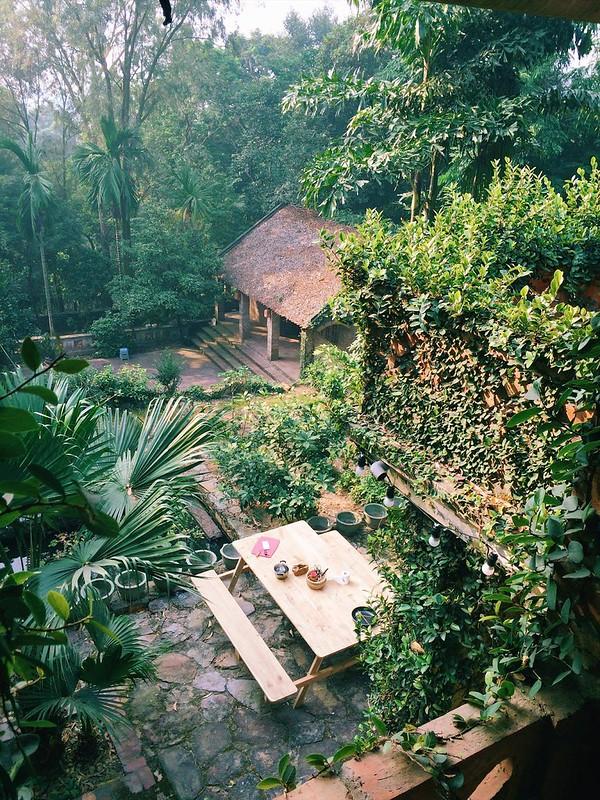 Jungle-House-2