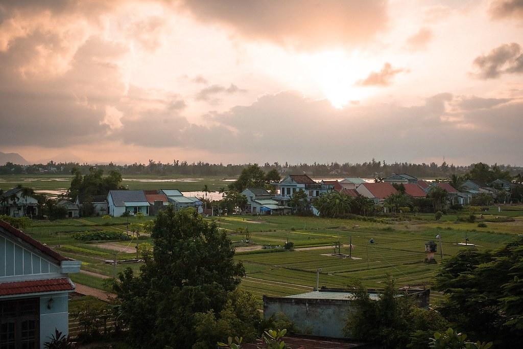 Trà Quế – Ngôi làng thơm mùi húng vị