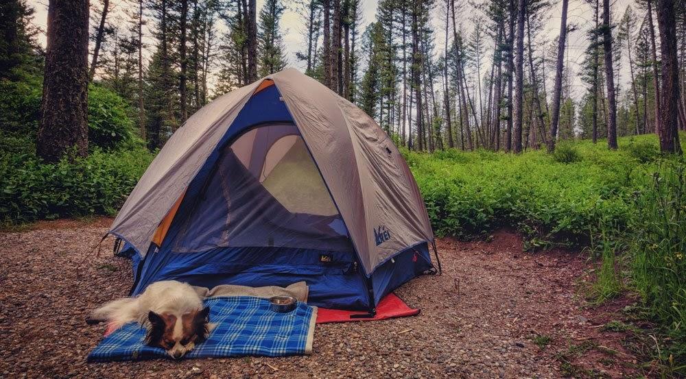 Tư vấn chọn mua lều cắm trại phù hợp cho dân phượt du lịch