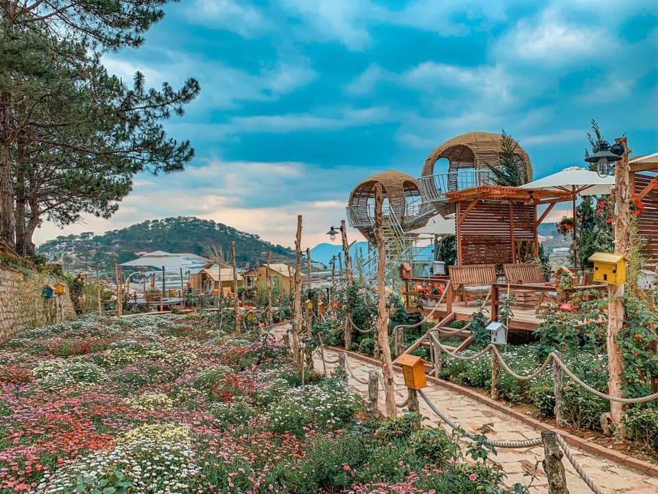 Check-in quán Cafe Tổ Chim Đà Lạt view đồi núi cực hấp dẫn
