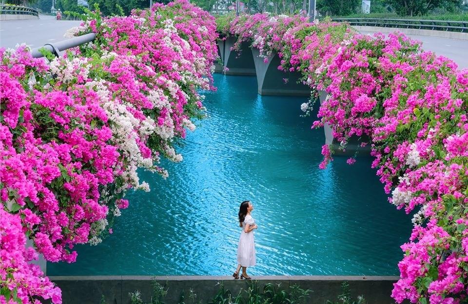 Cầu Thủy Tiên Ecopark – Thánh địa CHECK-IN Hoa Giấy gần Hà Nội